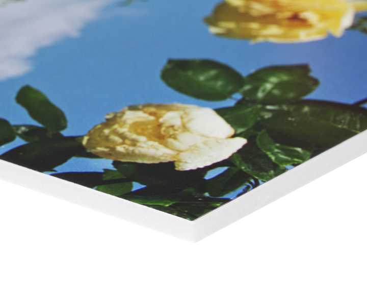 Sizes up to 84 inches x 48 inches in 5mm or 10mm Foamboard is a lightweight mounting material used for large hanging signs and displays or as a smooth and rigid substrate for framing photographs. Prints mounted to foamboard may be attached to the wall using velcro or small nails. Surprisingly sturdy and very light.